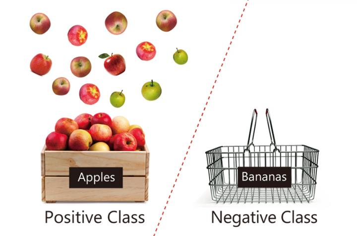 Schematic Showing Positive Data (Apples) and a Lack of Negative Data (Bananas)