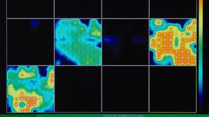 Brain Organoid Activity Map