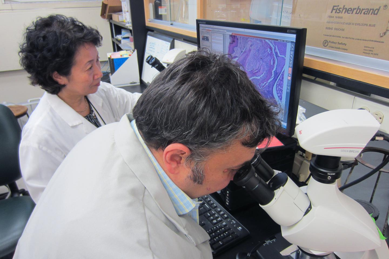 Keiko Watanabe and Vladimir Ilievski, University of Illinois at Chicago