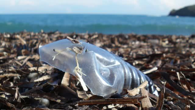 The missing ocean plastic sink: Gone with the rivers