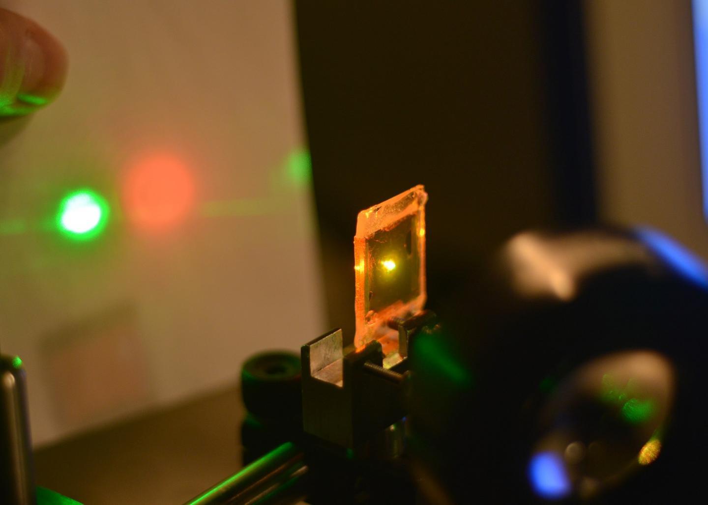 Liquid Crystal Elastomer
