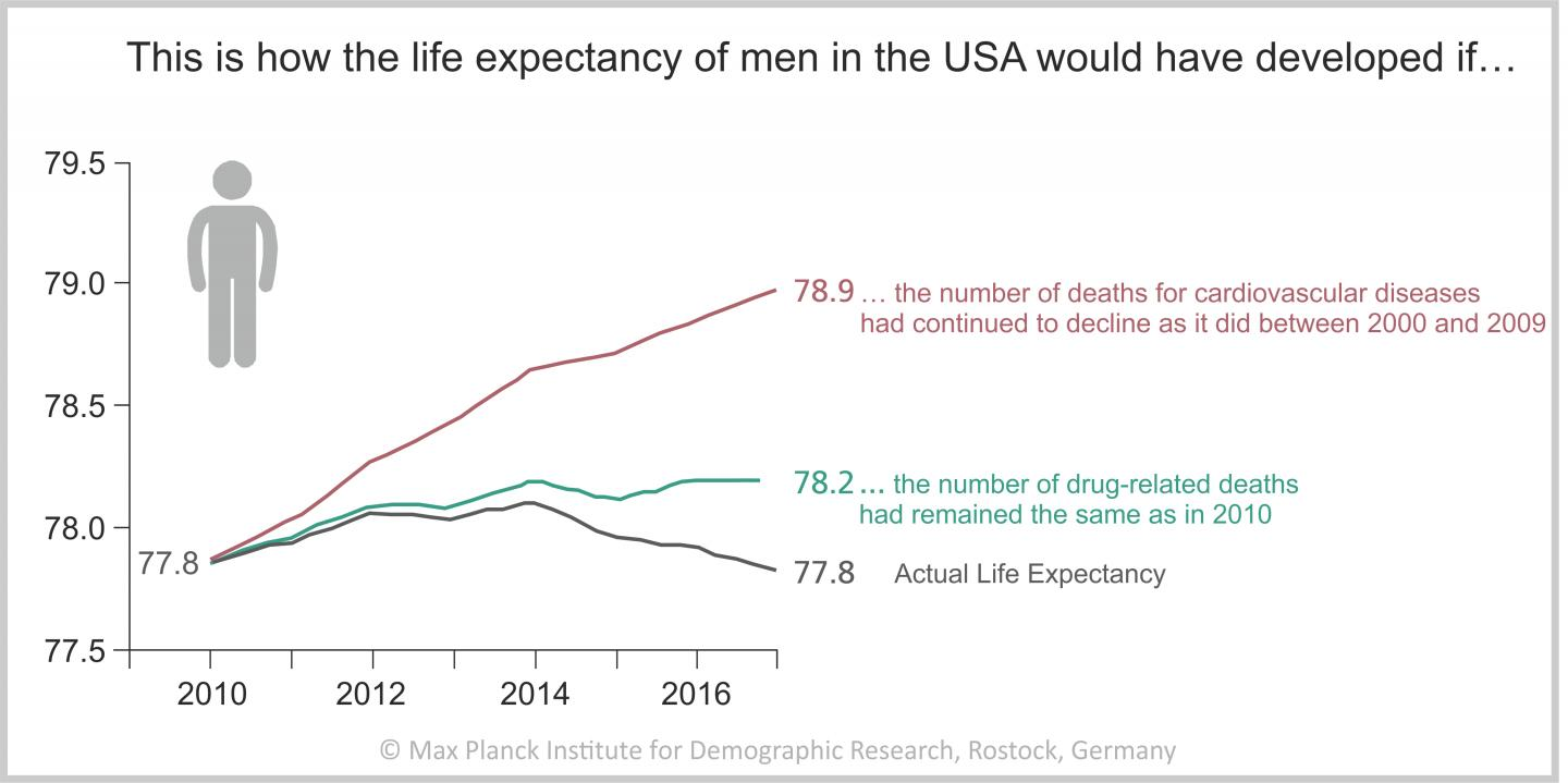 Simulation of life expectancy