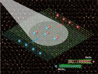 Atomically Thin Solar Cell