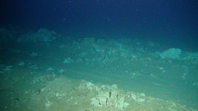 Plough Tracks on the Deep Seafloor