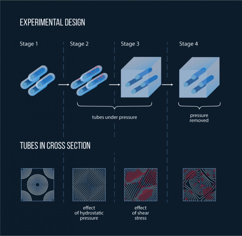 A Schematic Representation of the Nanotube 'Fusing' Process