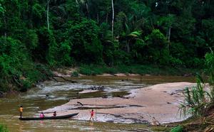 Brazilian Amazonia