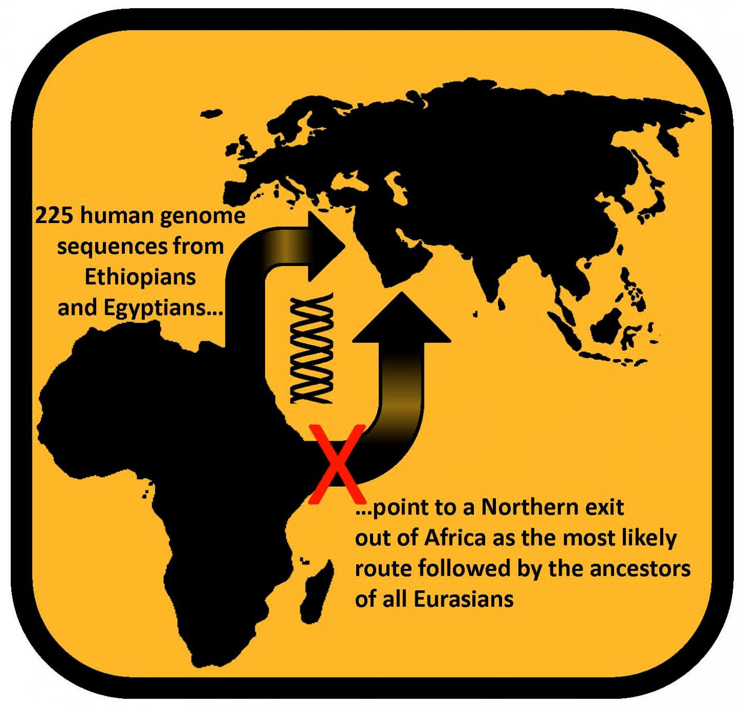 Route out of Africa