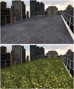 Green Roofs Study