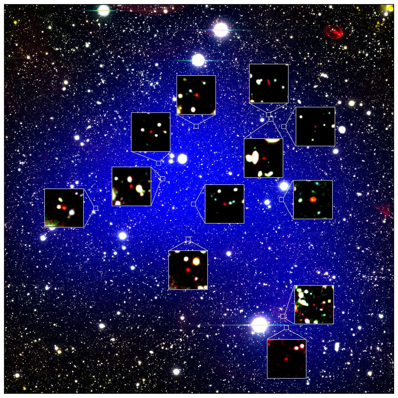 z660D Protocluster
