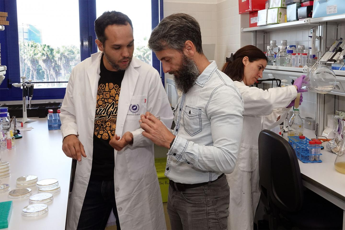 Diego Romero of the UMA, main author of this study, at BacBio Laboratory, where he conducted the research