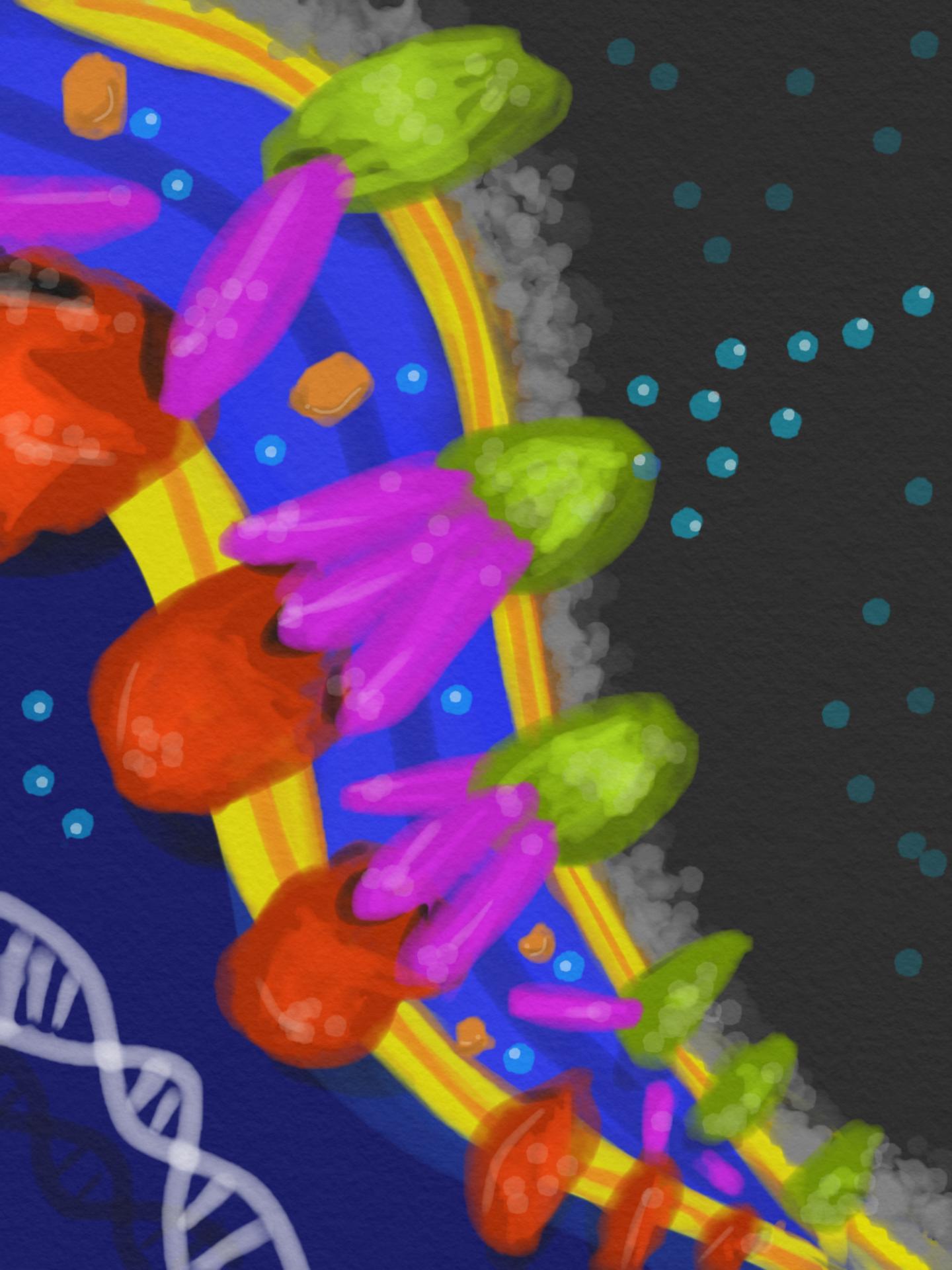 E. coli Bacteria's Defense Secret Revealed
