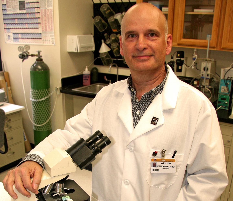 William Durante, Ph.D.
