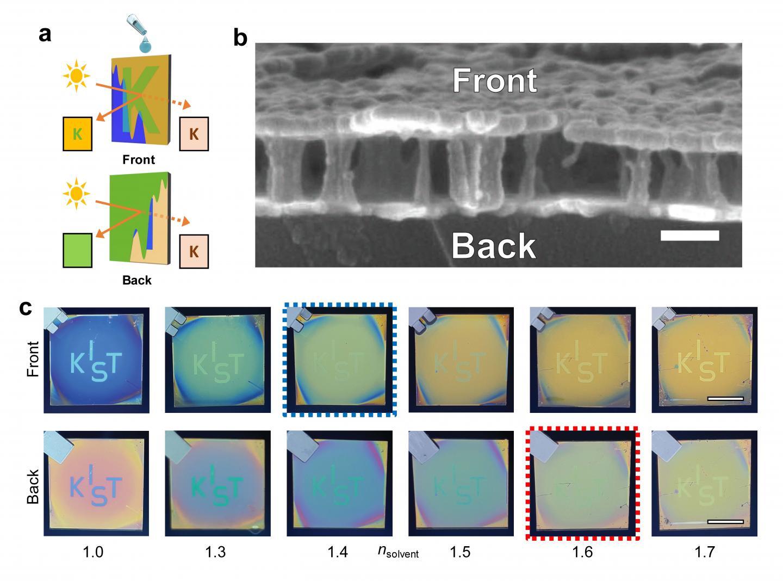 Liquid-permeable etalon for Janus colouration and asymmetric message hiding