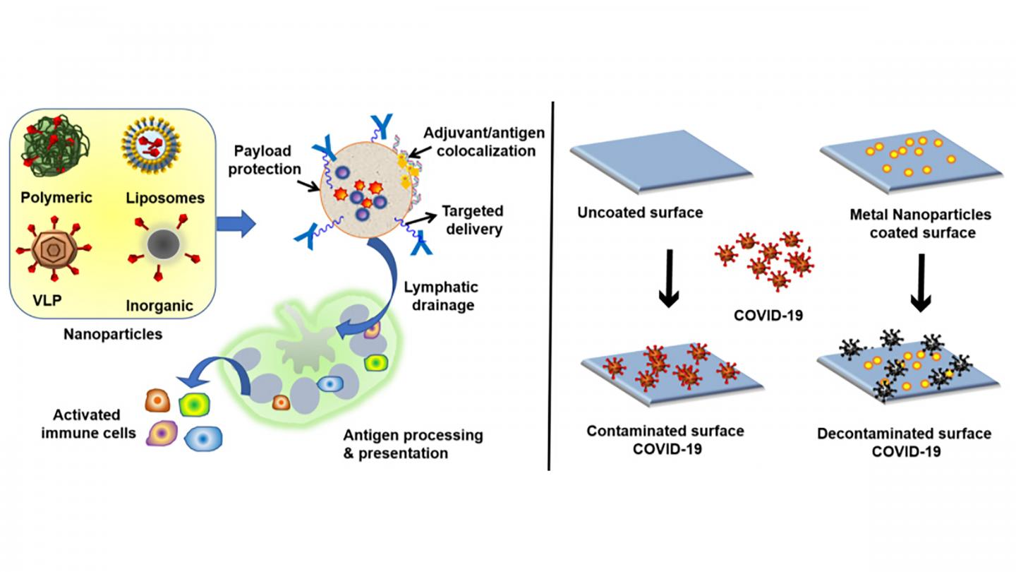 Biomaterials to strengthen vaccines and build surfaces