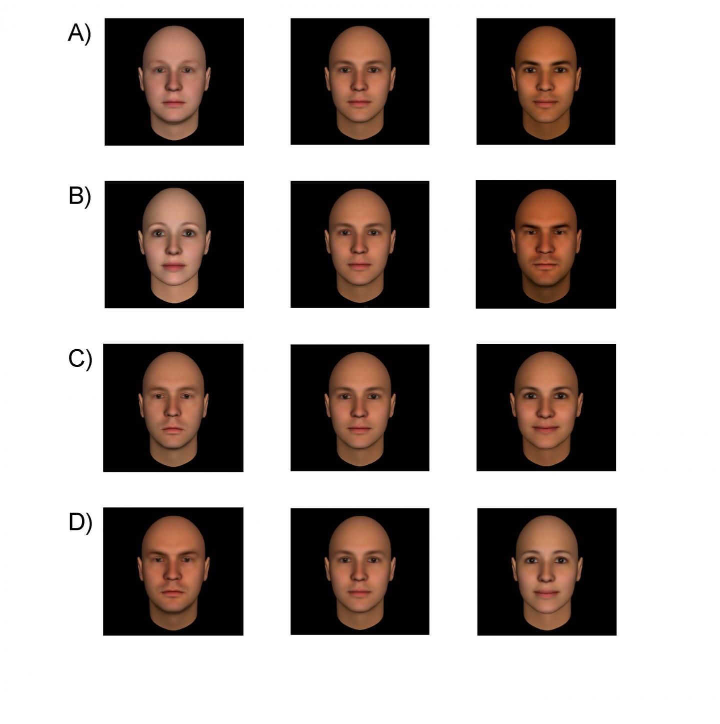 Building Models of Social Attributions from Faces