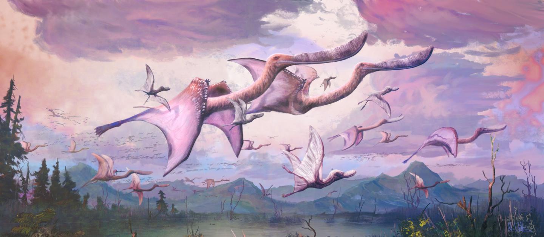 Pterodaustro guinazui
