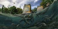 The Wealth of Aquatic Life