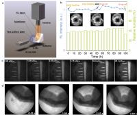 Real-time and low-dose X-ray imaging with Cs2Ag0.6Na0.4In0.85Bi0.15Cl6 scintillator wafers