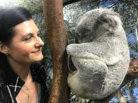 Koalas Eat and Sleep