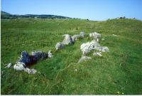 Primrose Grange, Ireland, before Excavation
