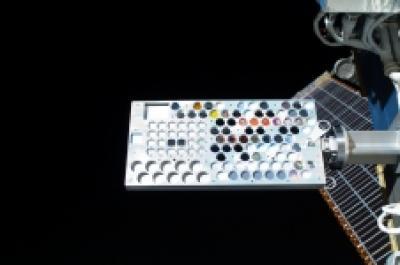 Experiment 8 in Orbit