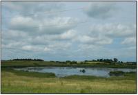 Constructed wetland