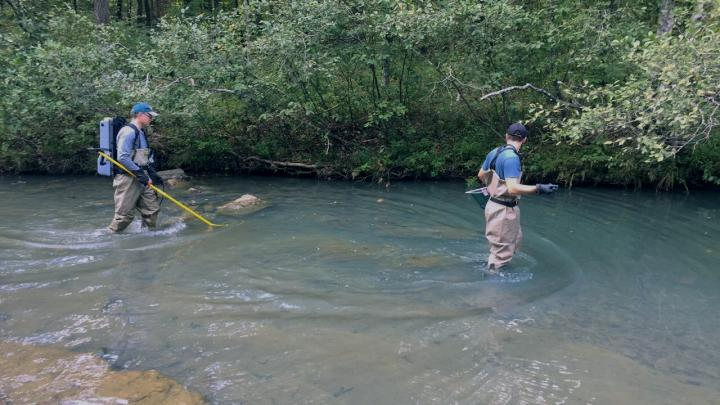Collecting samples from creek