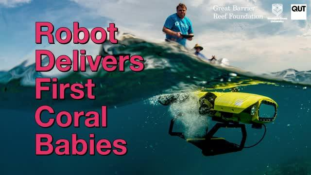 Robot Delivers First Coral Babies