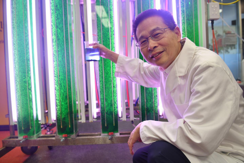 Flinders University Professor Wei Zhang