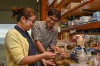 Dr. Kenicki Sajiki and Yuria Tahara, Okinawa Institute of Science and Technology
