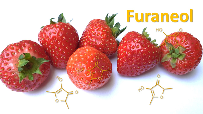 The odorant furaneol gives strawberries and other foods a caramel-like aroma.