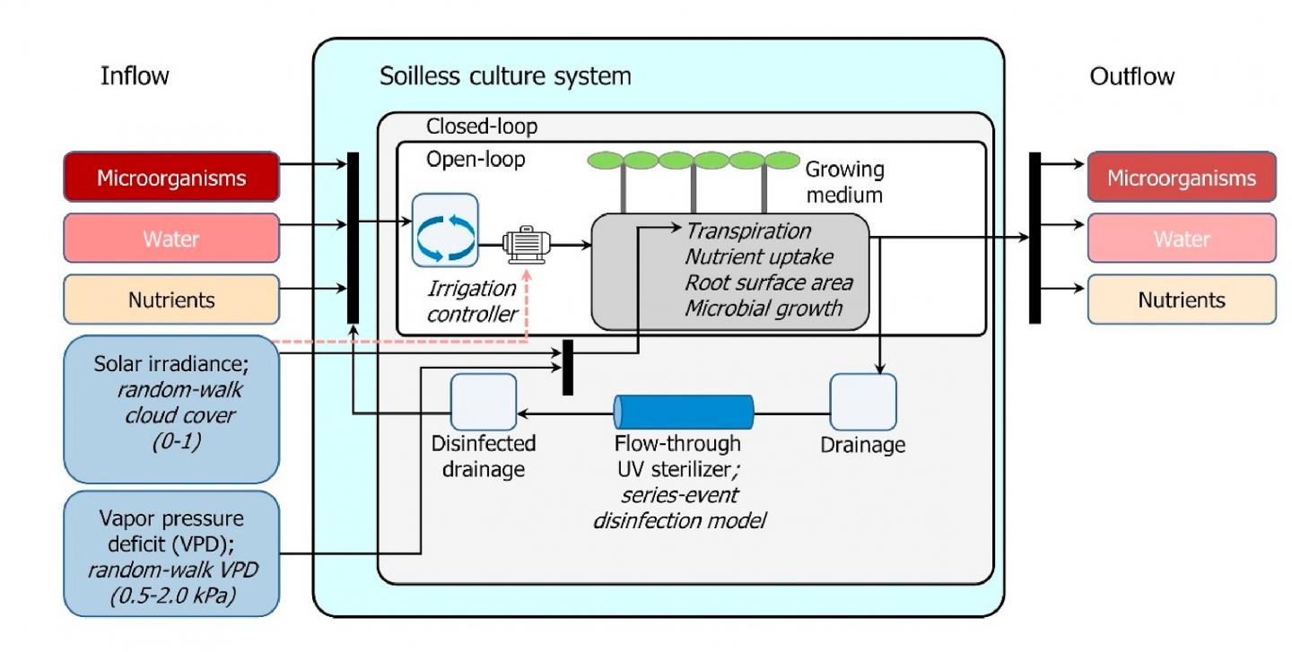 Overview of the Theoretical and Experimental Analysis Setup