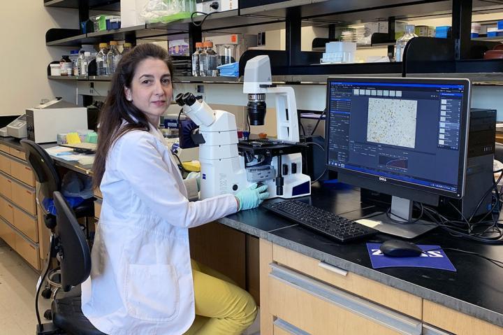 Dr. Jezabel R. Blanco