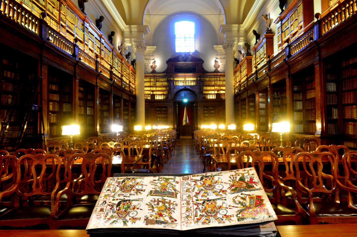 The Codex Cospi at the Bologna University Library