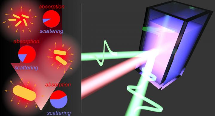 Sensing the Size-Dependent Light-To-Heat Conversion Efficiency of Nanoparticles