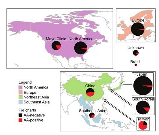 Figure 1. Proportions of Examined Liver Cancers with AA Mutations in Various Regions