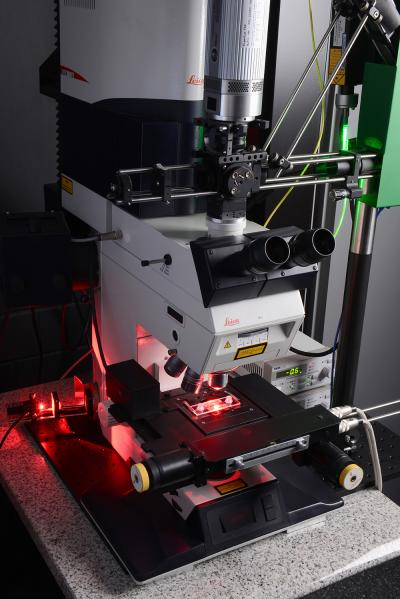 Faster Testing of New Pharmaceuticals