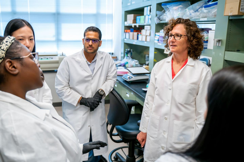 Barbara Nikolajczyk, Ph.D., of the University of Kentucky Barnstable Brown Diabetes Center