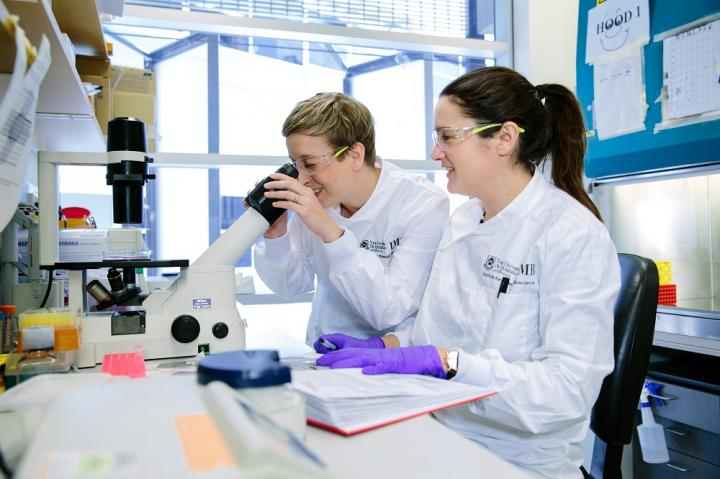 Researchers at UQ's Institute for Molecular Bioscience