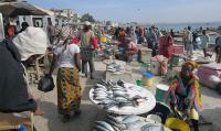 Senegal Market