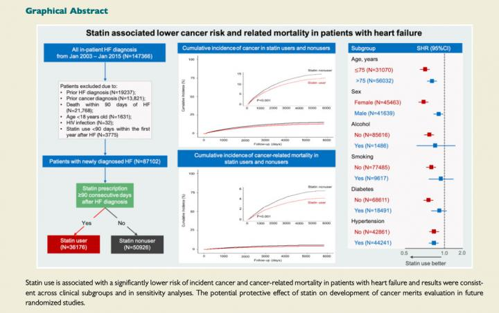 Statin use is linked to reduced risk of cancer among heart failure patients