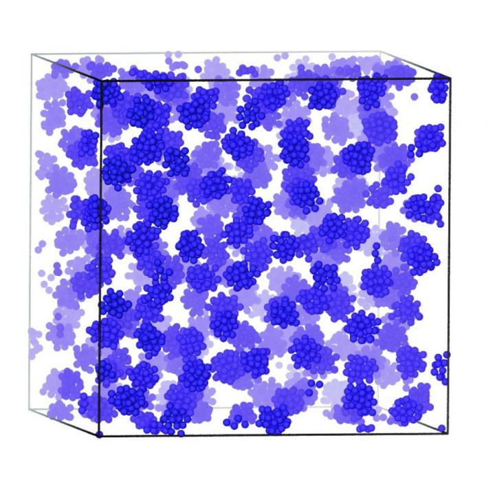 Self-assembled Cluster Fluid