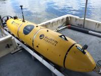 Unmanned Marine Vehicle Platforms