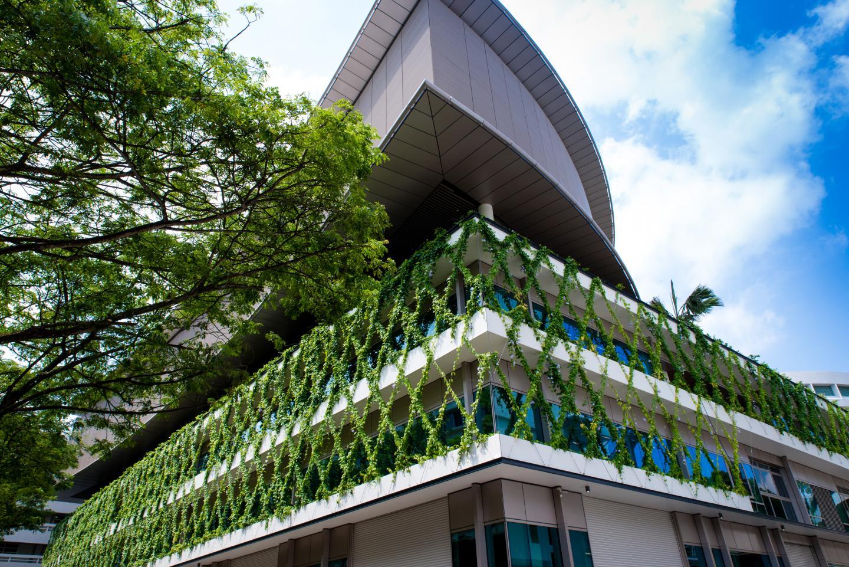 Vertical greenery can act as a stress buffer, NTU Singapore study finds