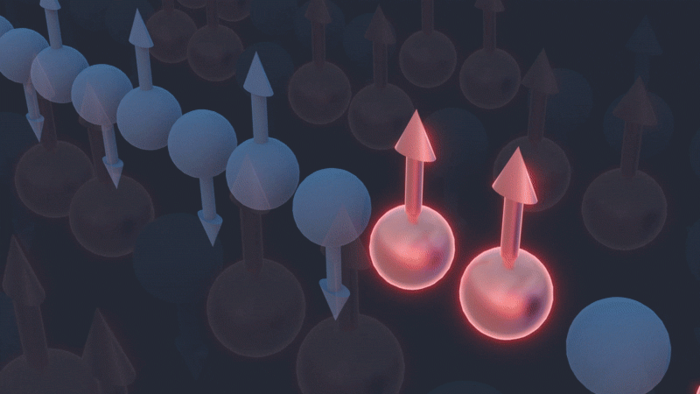 Subtle Spin: A Novel Study of Quantum Material Proves Theoretical Predictions