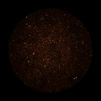 MeerKAT Image of Radio Galaxies