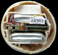 Egg interior
