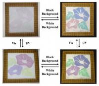 Color Change of Pigment Obtained by Fusing Spherical Colloidal Crystal and Diarylethene