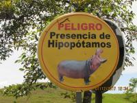 Hippo Warning Sign