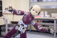 iCub Humanoid Robot Balancing